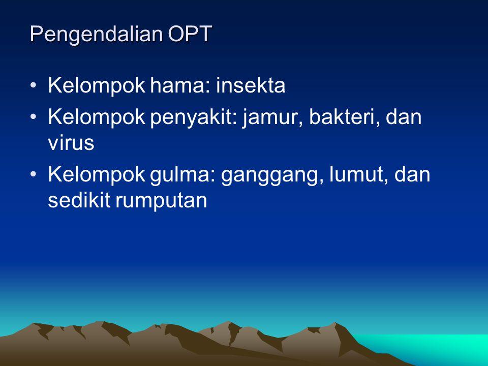 Pengendalian OPT Kelompok hama: insekta. Kelompok penyakit: jamur, bakteri, dan virus.