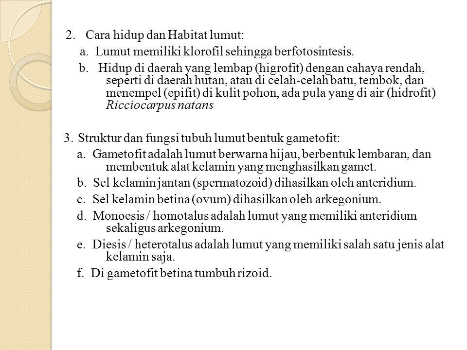 2. Cara hidup dan Habitat lumut: