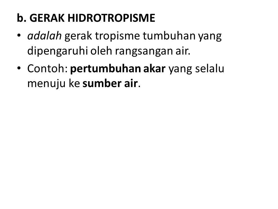 b. GERAK HIDROTROPISME adalah gerak tropisme tumbuhan yang dipengaruhi oleh rangsangan air.