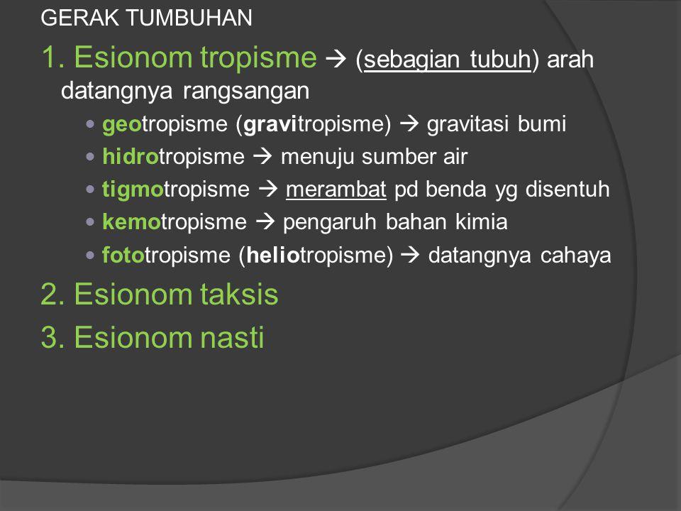 1. Esionom tropisme  (sebagian tubuh) arah datangnya rangsangan