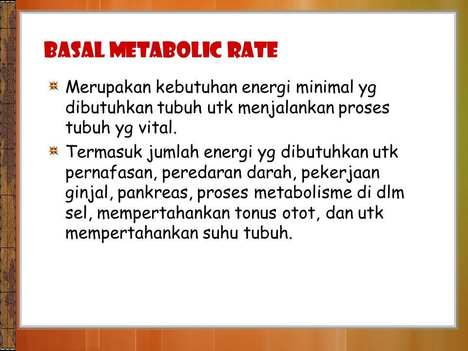 Basal Metabolic Rate Merupakan kebutuhan energi minimal yg dibutuhkan tubuh utk menjalankan proses tubuh yg vital.