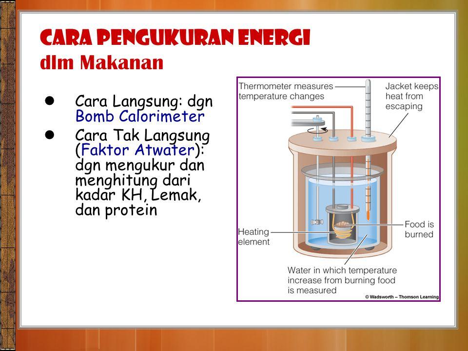 CARA PENGUKURAN ENERGI dlm Makanan