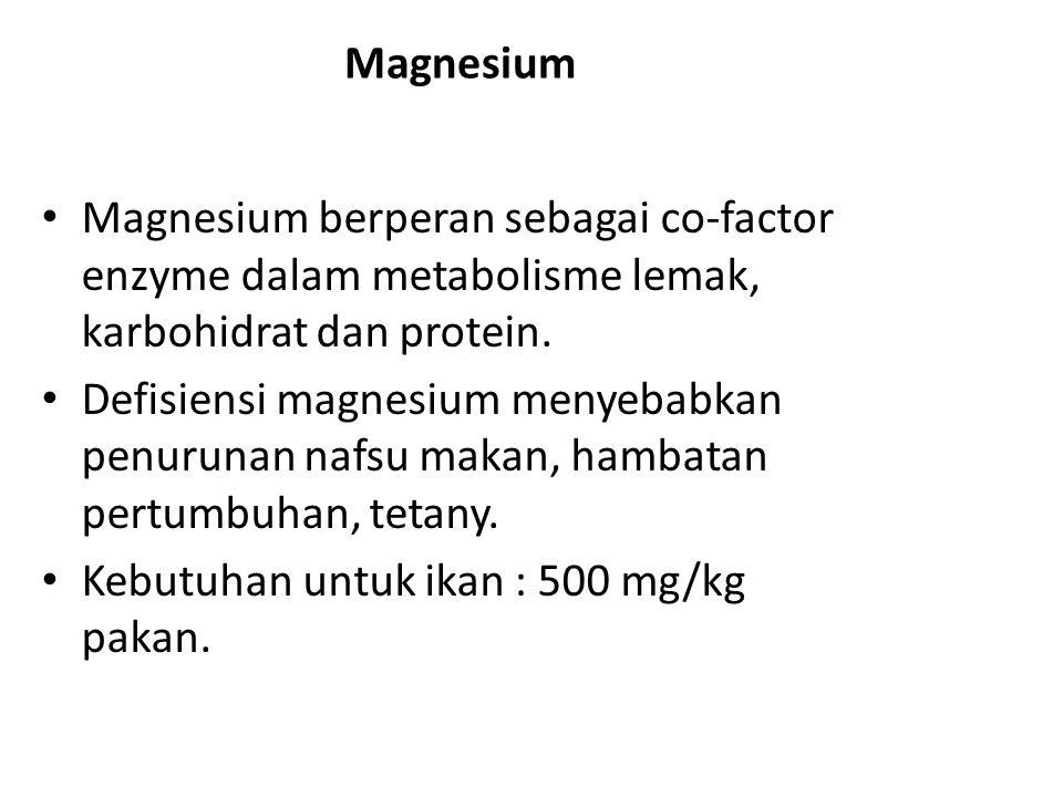 Magnesium Magnesium berperan sebagai co-factor enzyme dalam metabolisme lemak, karbohidrat dan protein.