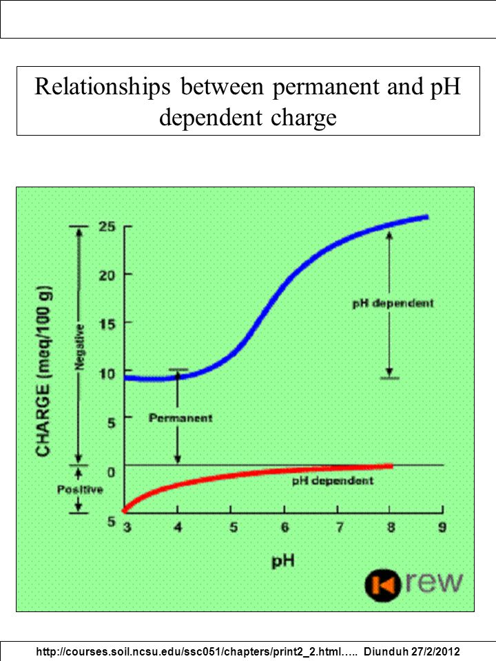 Relationships between permanent and pH dependent charge