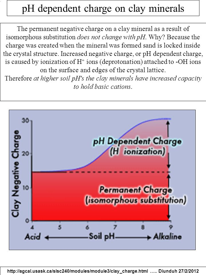 pH dependent charge on clay minerals