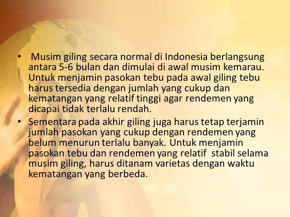 Musim giling secara normal di Indonesia berlangsung antara 5-6 bulan dan dimulai di awal musim kemarau. Untuk menjamin pasokan tebu pada awal giling tebu harus tersedia dengan jumlah yang cukup dan kematangan yang relatif tinggi agar rendemen yang dicapai tidak terlalu rendah.