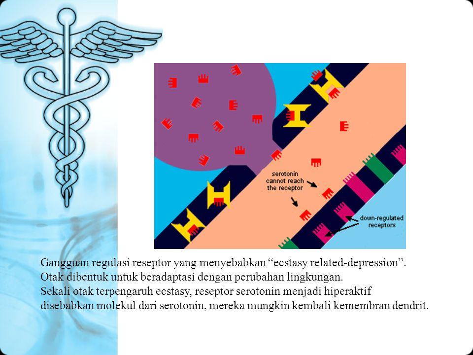Gangguan regulasi reseptor yang menyebabkan ecstasy related-depression .