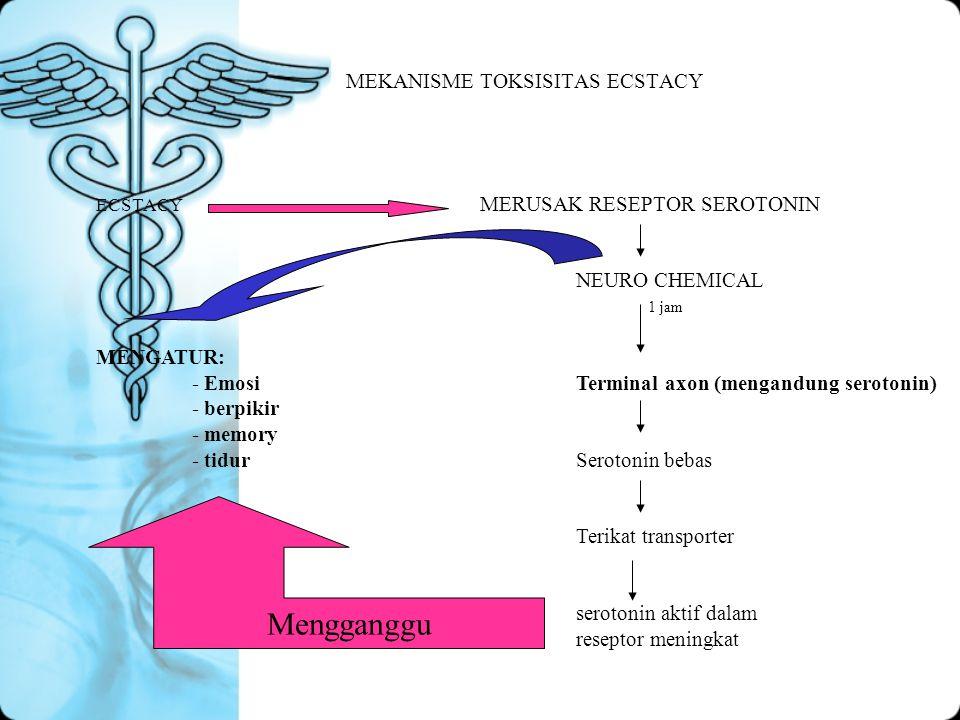 MEKANISME TOKSISITAS ECSTACY