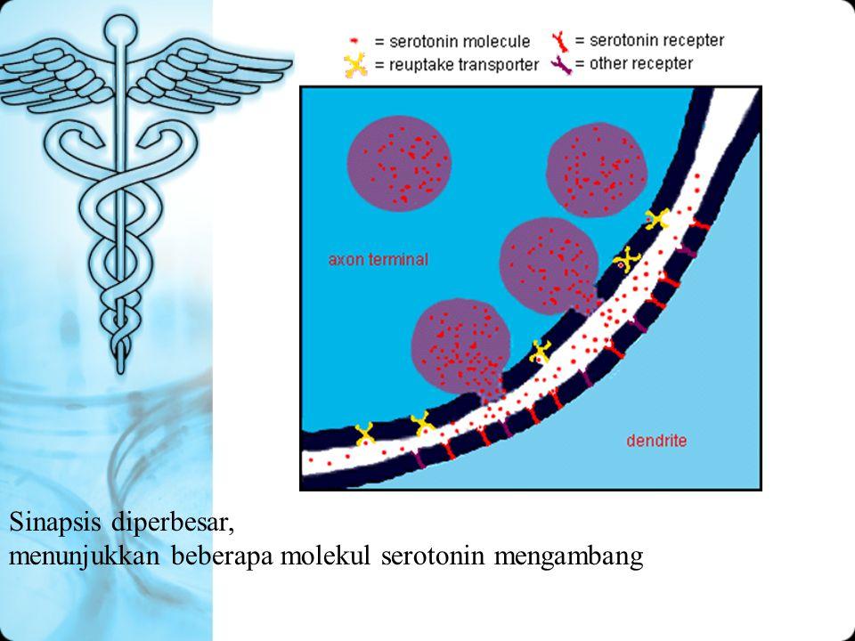 Sinapsis diperbesar, menunjukkan beberapa molekul serotonin mengambang