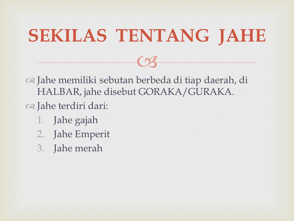 SEKILAS TENTANG JAHE Jahe memiliki sebutan berbeda di tiap daerah, di HALBAR, jahe disebut GORAKA/GURAKA.