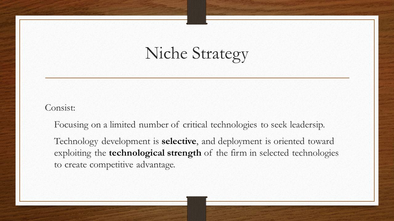 Niche Strategy