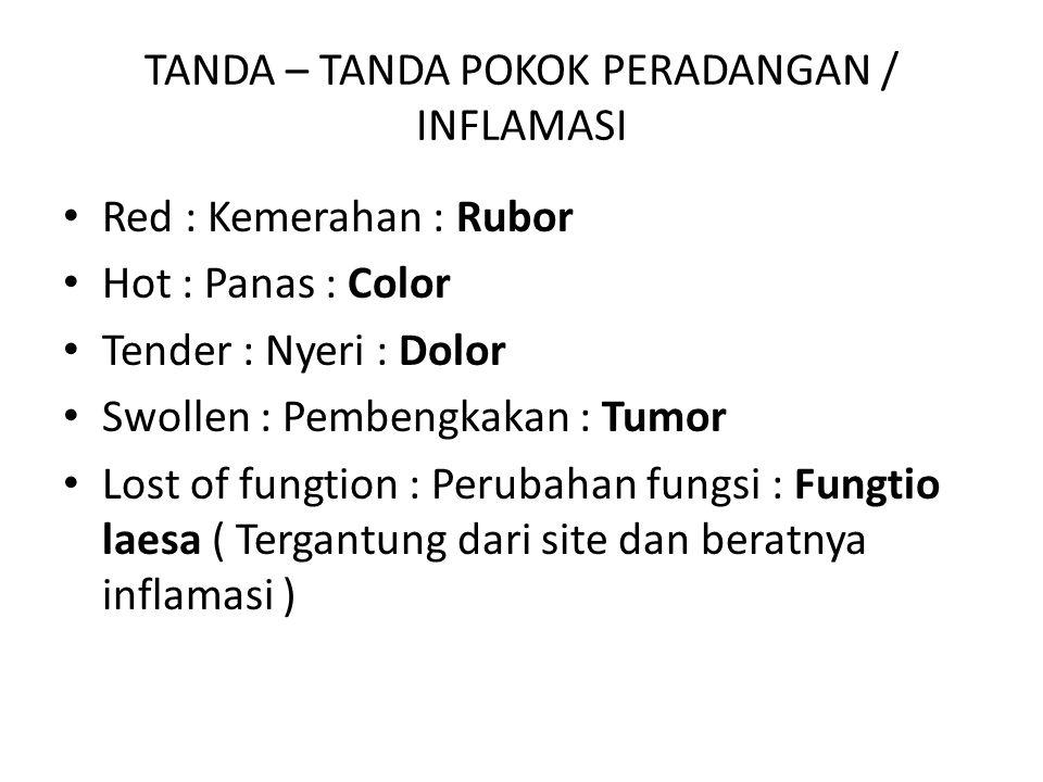 TANDA – TANDA POKOK PERADANGAN / INFLAMASI