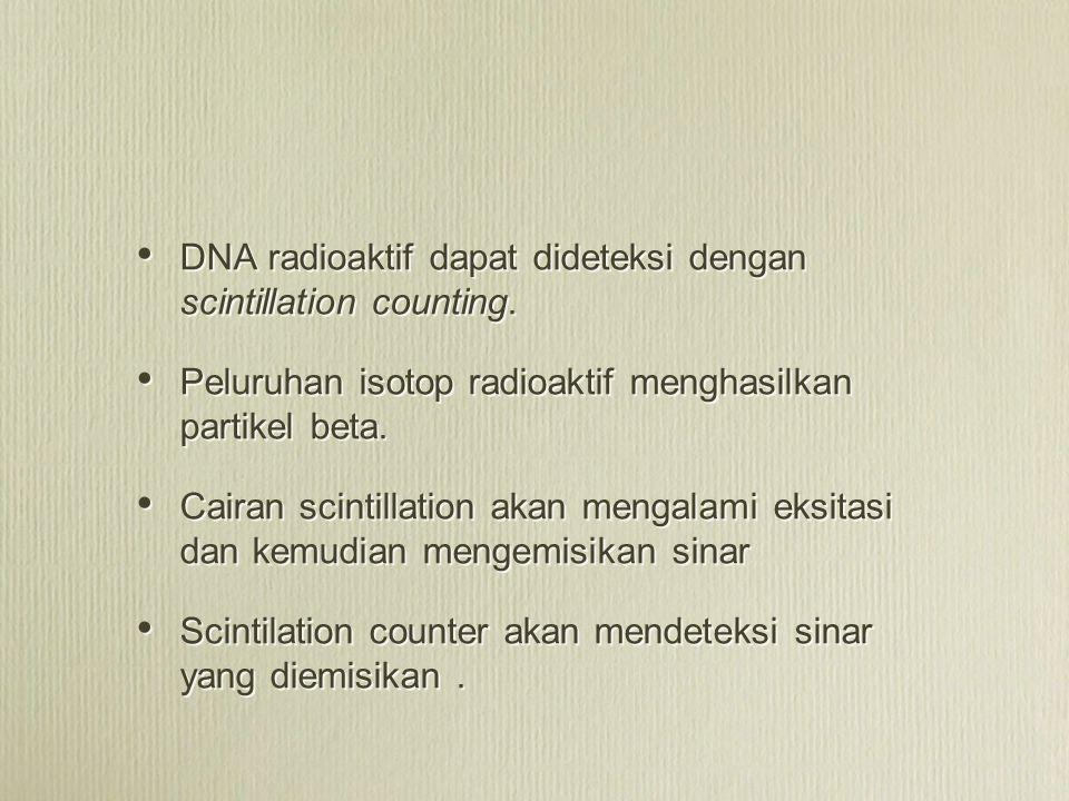 DNA radioaktif dapat dideteksi dengan scintillation counting.