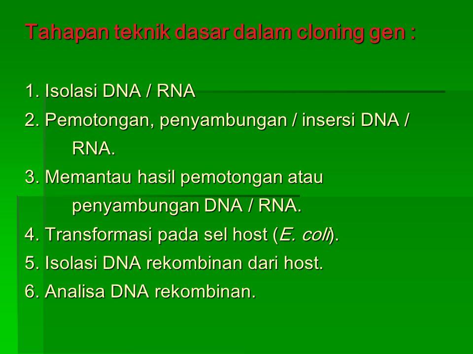 Tahapan teknik dasar dalam cloning gen : 1. Isolasi DNA / RNA 2