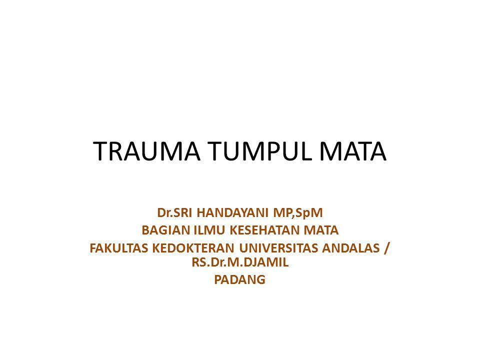 TRAUMA TUMPUL MATA Dr.SRI HANDAYANI MP,SpM BAGIAN ILMU KESEHATAN MATA