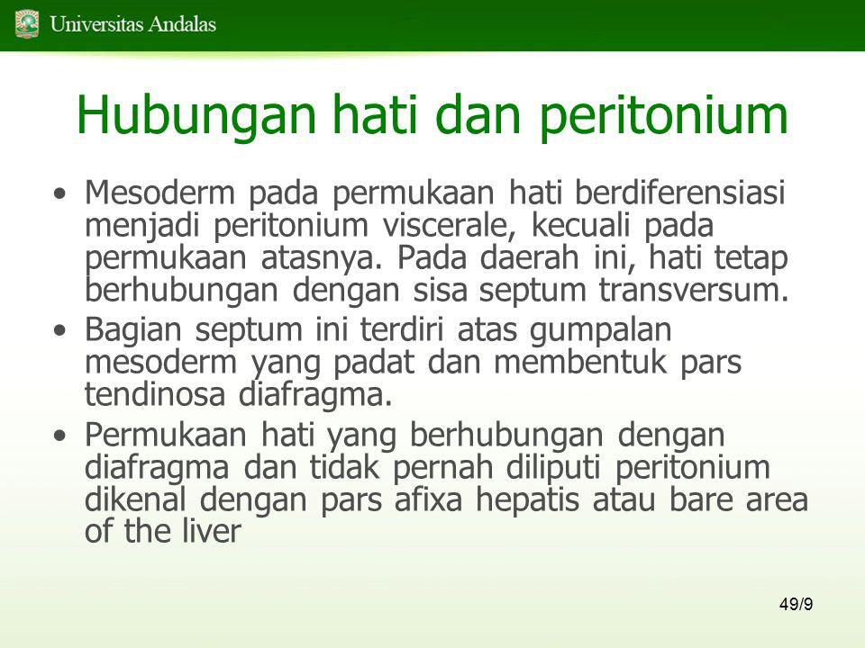 Hubungan hati dan peritonium