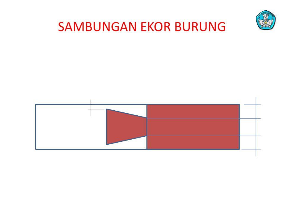 SAMBUNGAN EKOR BURUNG