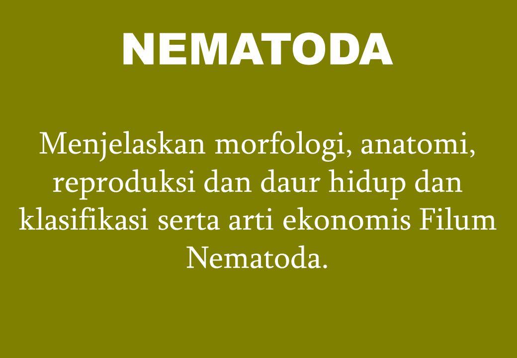 NEMATODA Menjelaskan morfologi, anatomi, reproduksi dan daur hidup dan klasifikasi serta arti ekonomis Filum Nematoda.