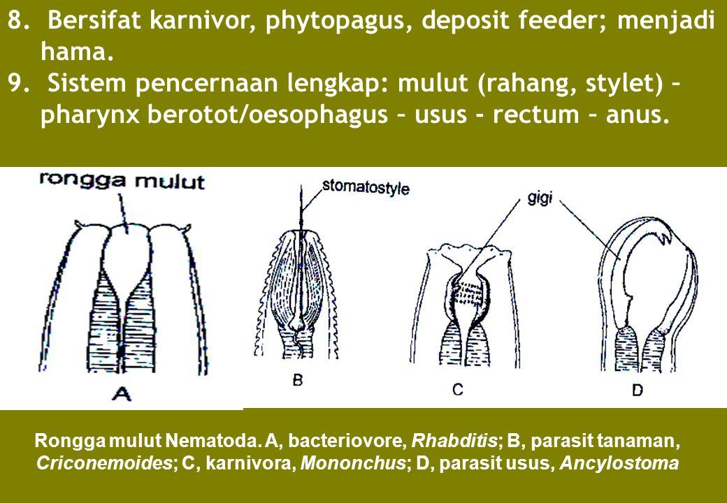 8. Bersifat karnivor, phytopagus, deposit feeder; menjadi hama.