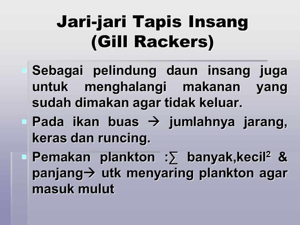Jari-jari Tapis Insang (Gill Rackers)