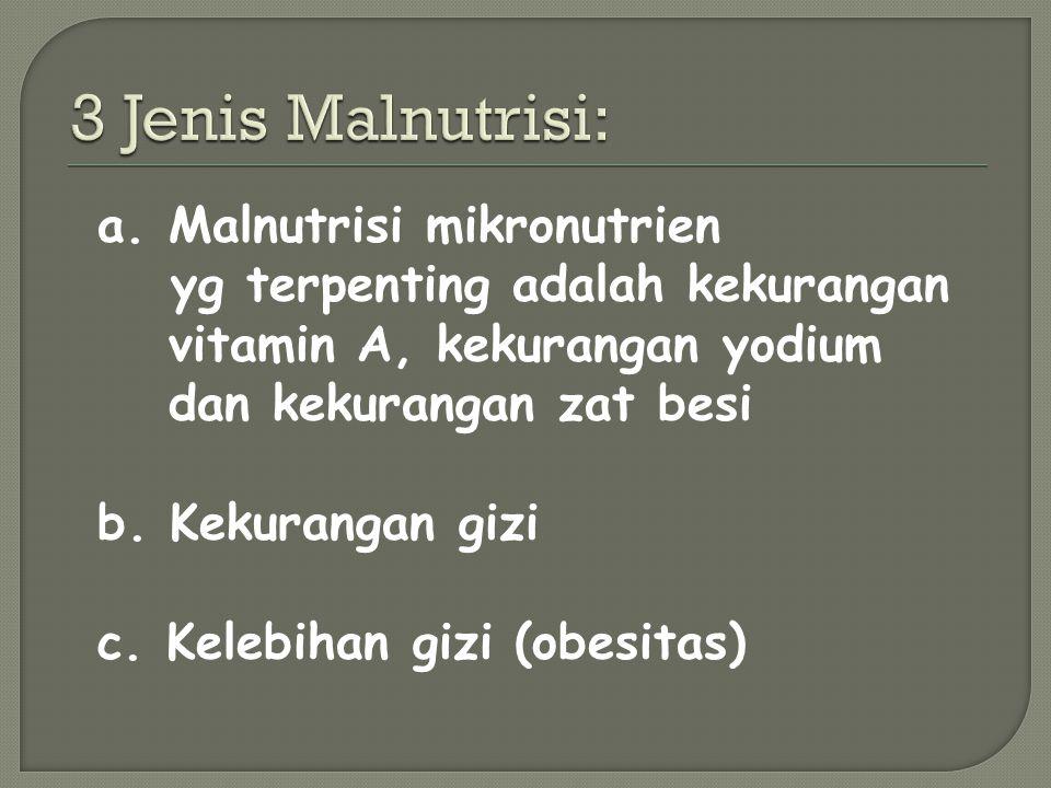 3 Jenis Malnutrisi: