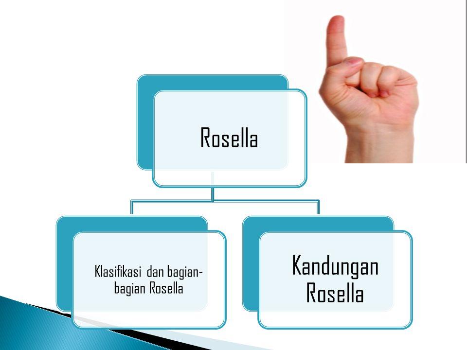 Klasifikasi dan bagian-bagian Rosella
