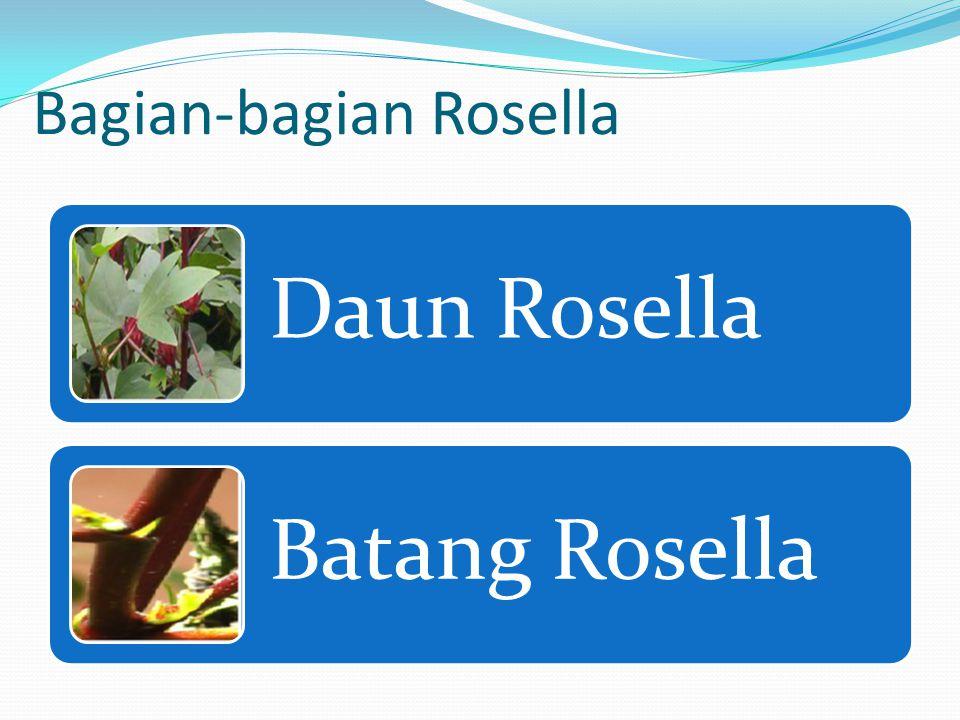 Bagian-bagian Rosella