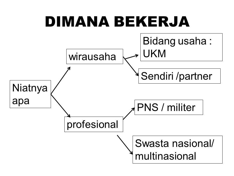 DIMANA BEKERJA Bidang usaha : UKM wirausaha Sendiri /partner