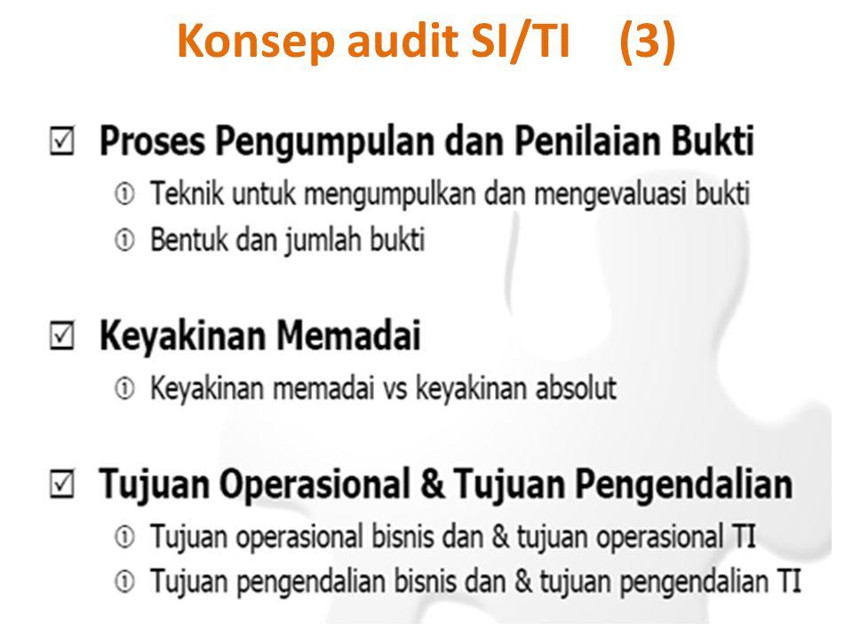 Konsep audit SI/TI (3)