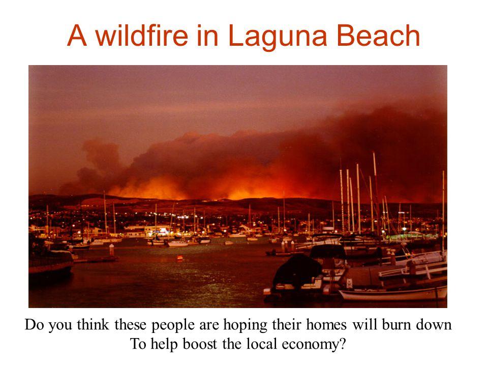 A wildfire in Laguna Beach
