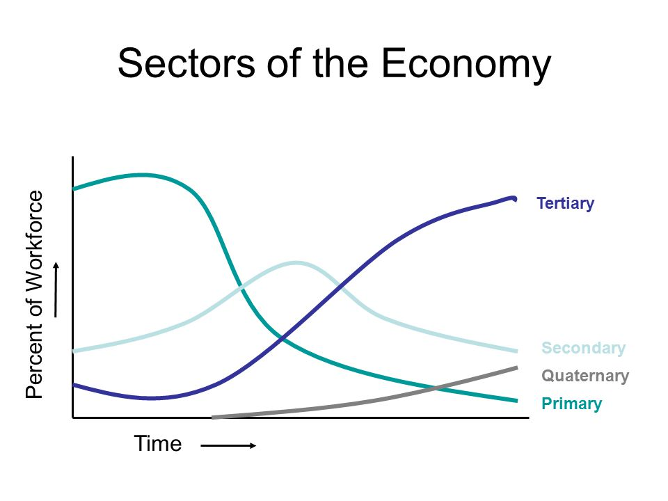 Sectors of the Economy Percent of Workforce Time Tertiary Secondary