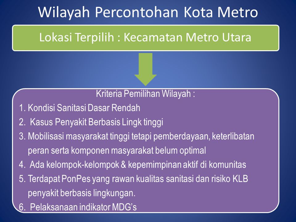 Wilayah Percontohan Kota Metro