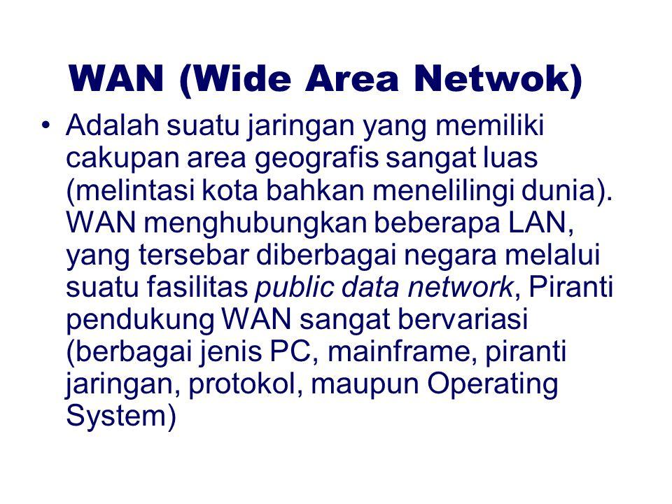 WAN (Wide Area Netwok)