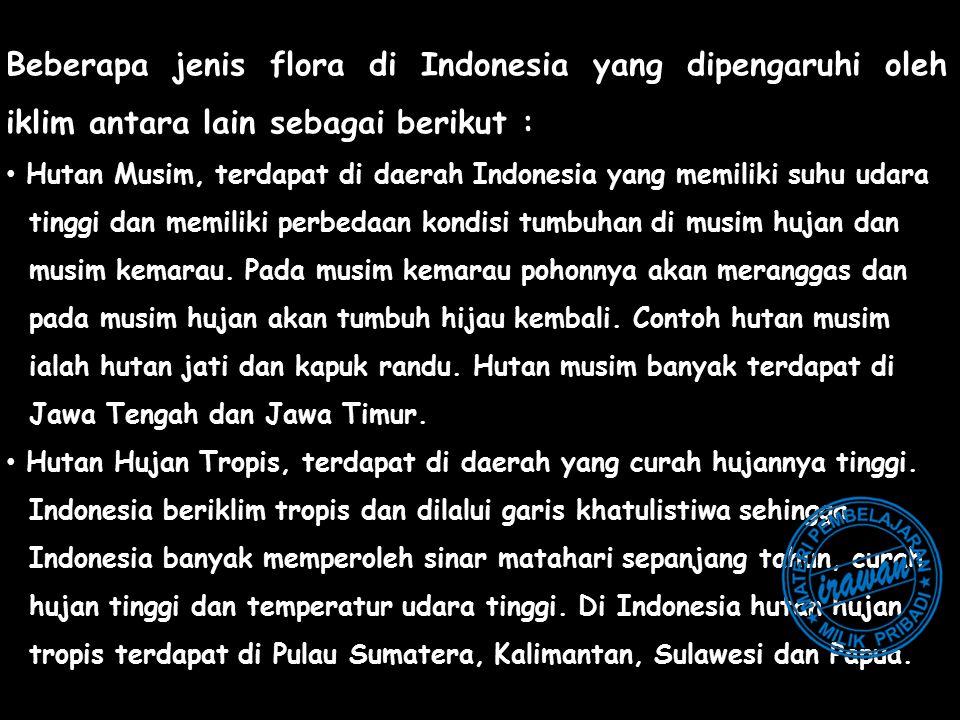 Beberapa jenis flora di Indonesia yang dipengaruhi oleh iklim antara lain sebagai berikut :