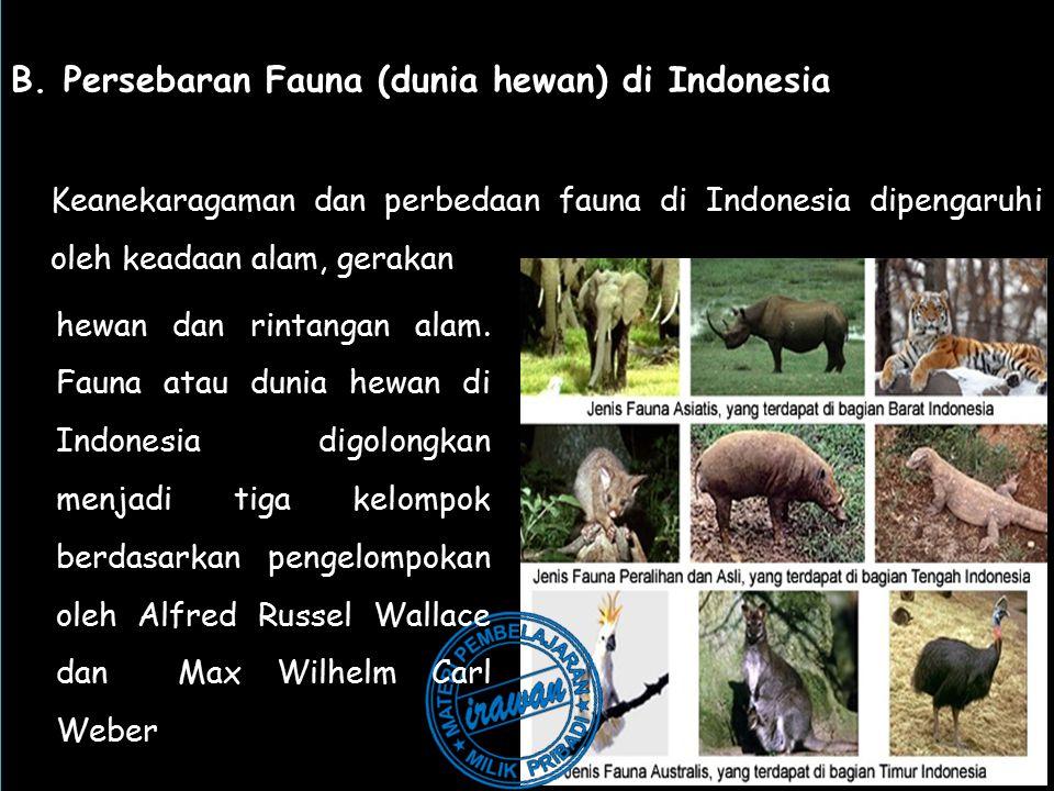 B. Persebaran Fauna (dunia hewan) di Indonesia
