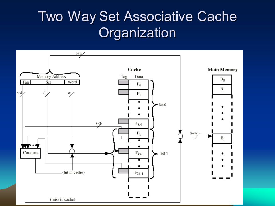 Two Way Set Associative Cache Organization