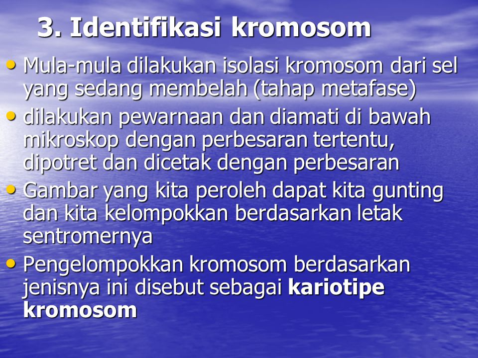 3. Identifikasi kromosom