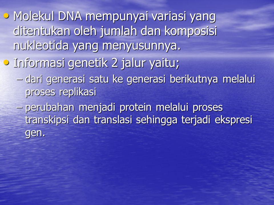 Informasi genetik 2 jalur yaitu;