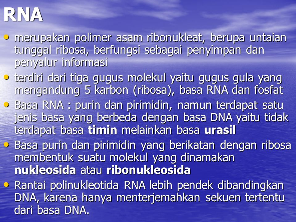 RNA merupakan polimer asam ribonukleat, berupa untaian tunggal ribosa, berfungsi sebagai penyimpan dan penyalur informasi.