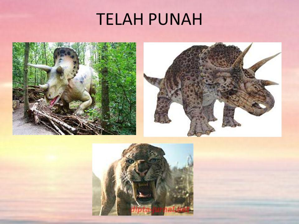 TELAH PUNAH