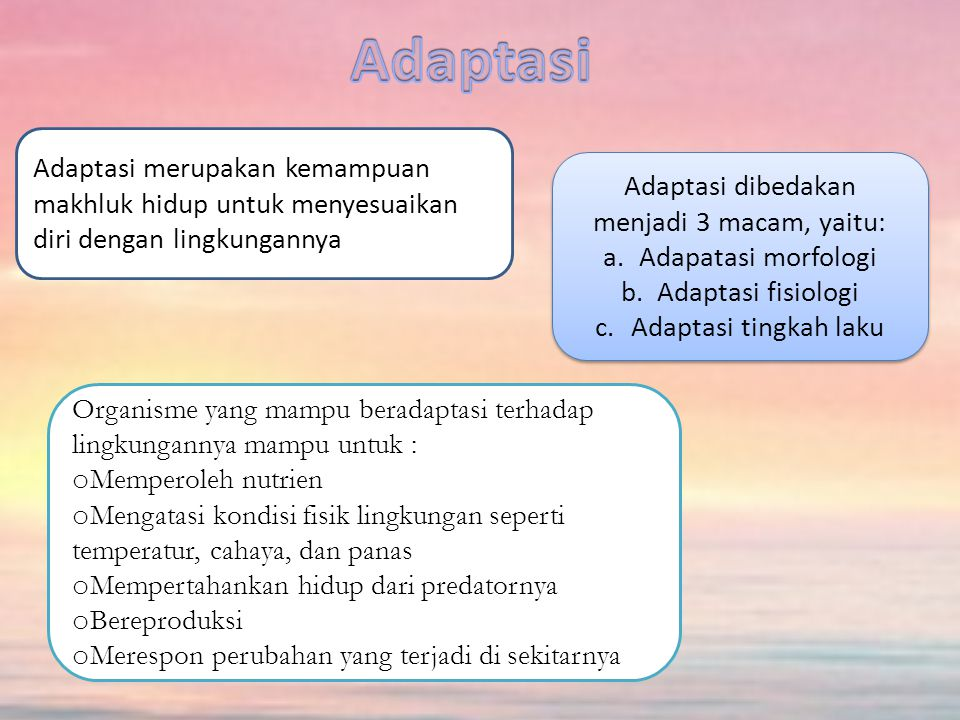 Adaptasi dibedakan menjadi 3 macam, yaitu: