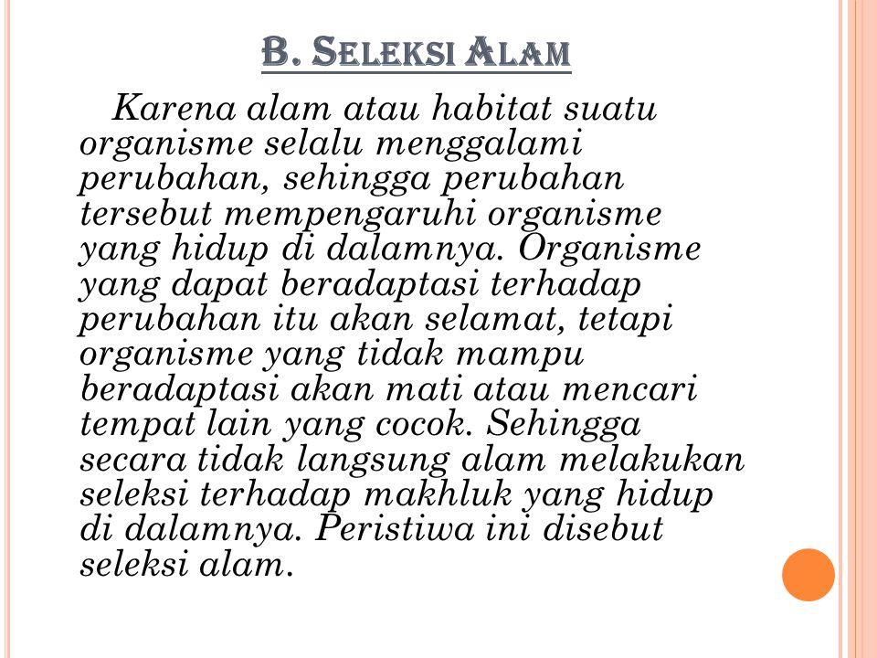 B. Seleksi Alam