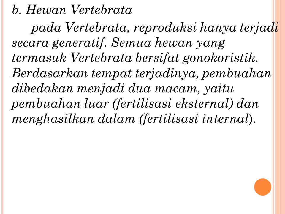 b. Hewan Vertebrata pada Vertebrata, reproduksi hanya terjadi secara generatif.