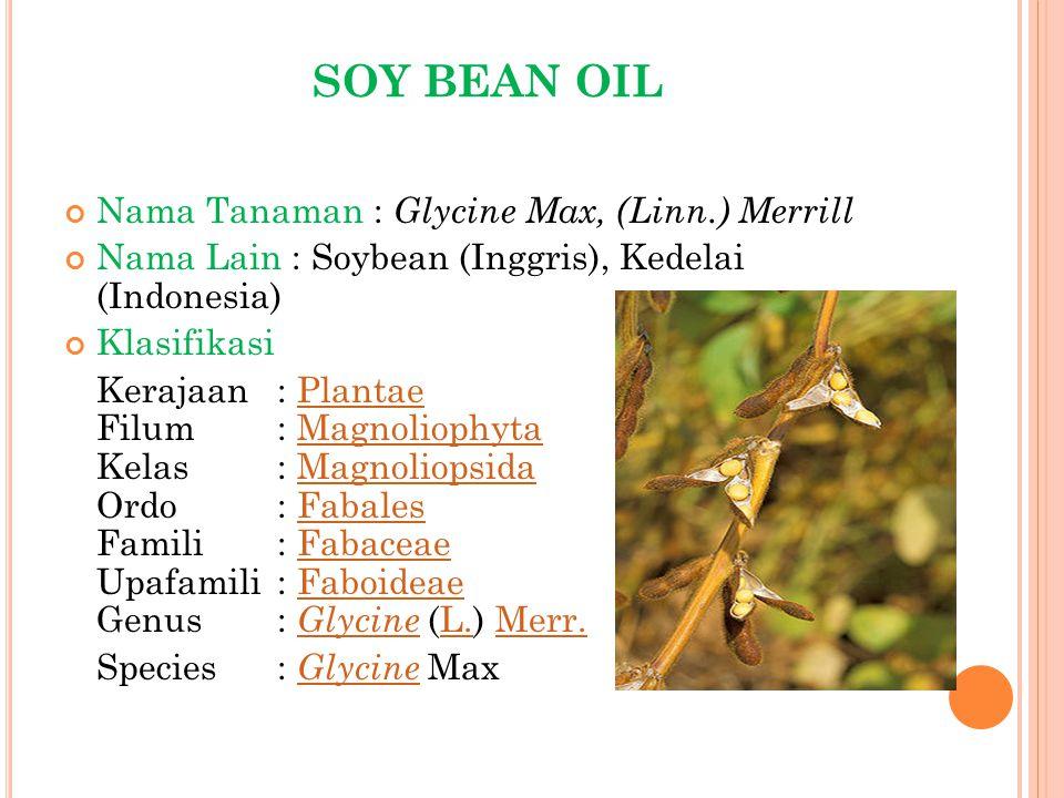 SOY BEAN OIL Nama Tanaman : Glycine Max, (Linn.) Merrill
