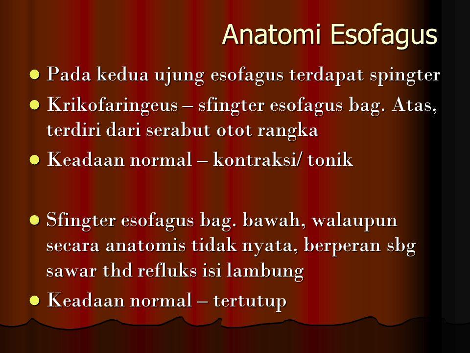 Anatomi Esofagus Pada kedua ujung esofagus terdapat spingter