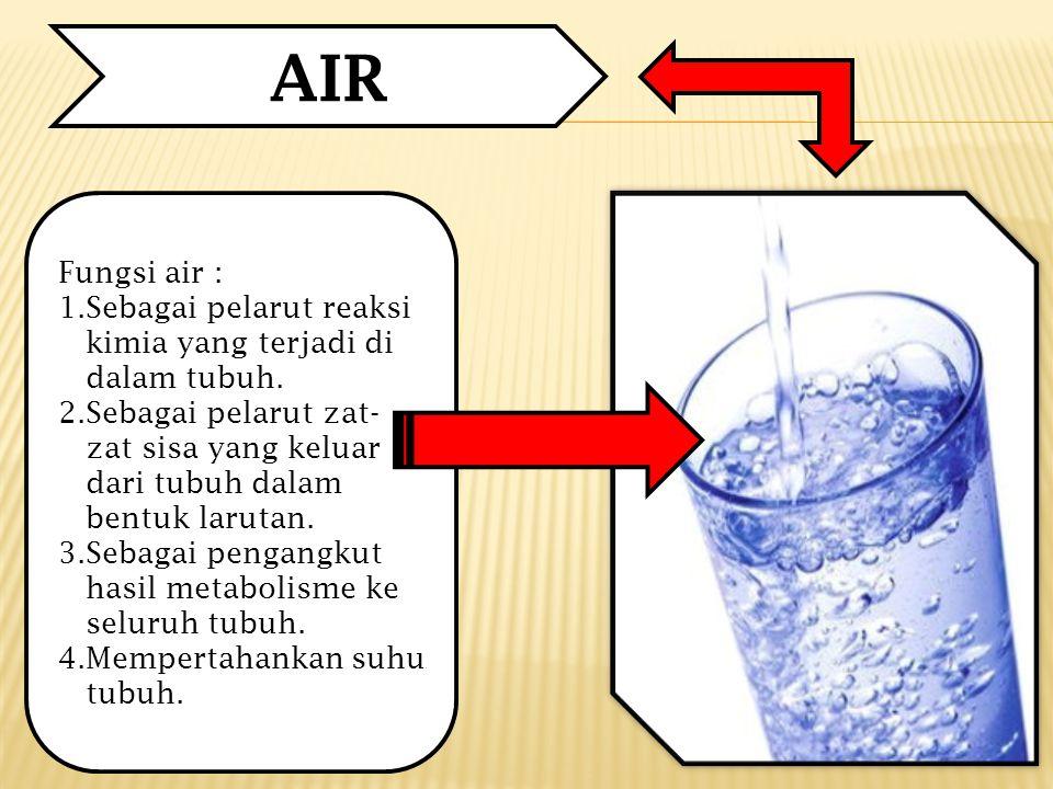 AIR Fungsi air : Sebagai pelarut reaksi kimia yang terjadi di dalam tubuh.