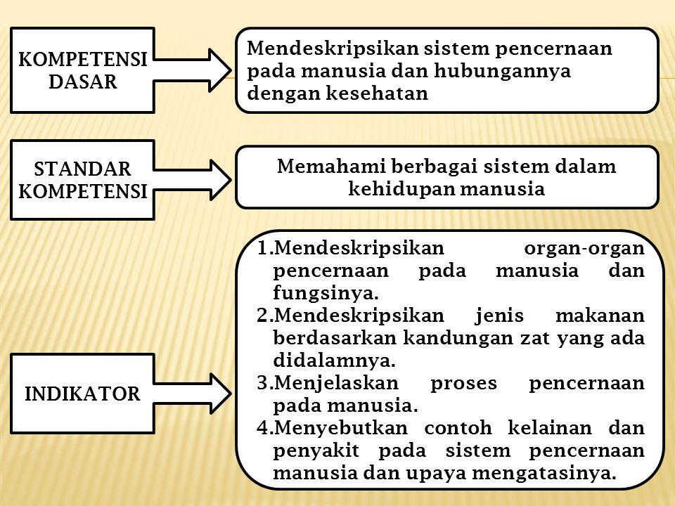Memahami berbagai sistem dalam kehidupan manusia