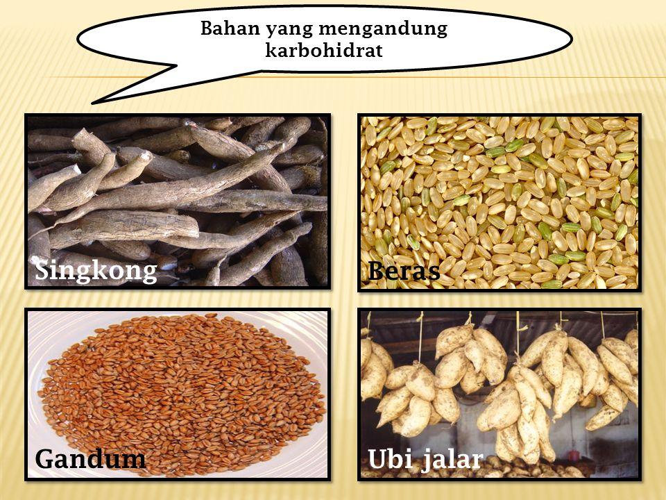 Bahan yang mengandung karbohidrat
