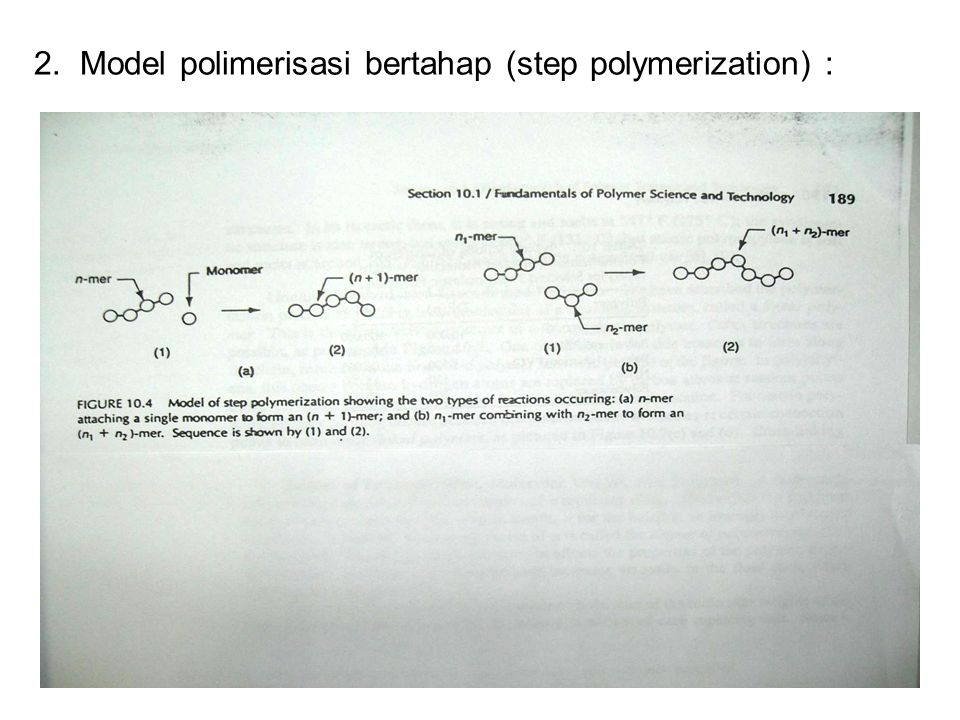 2. Model polimerisasi bertahap (step polymerization) :