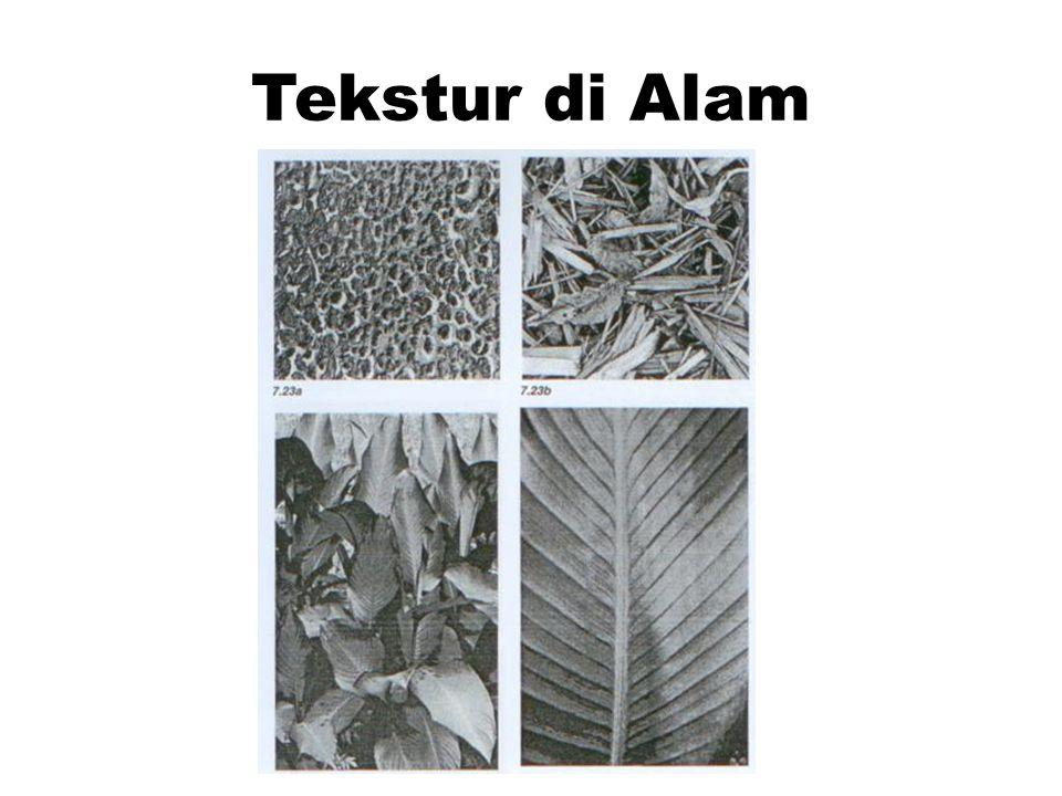 Tekstur di Alam